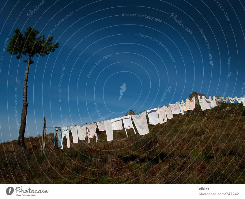 clothing Clothing Dry extending clothes in the sun Mountain Tree pine tree Bushes White Blue Sky Summer Heat Village old habit Work and employment Home Tank