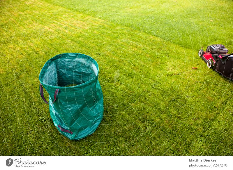 Who wants to annoy the neighbors... Gardening Esthetic Authentic Simple Lawnmower Mow the lawn Work and employment Park Sack Grass Grass surface Grassland