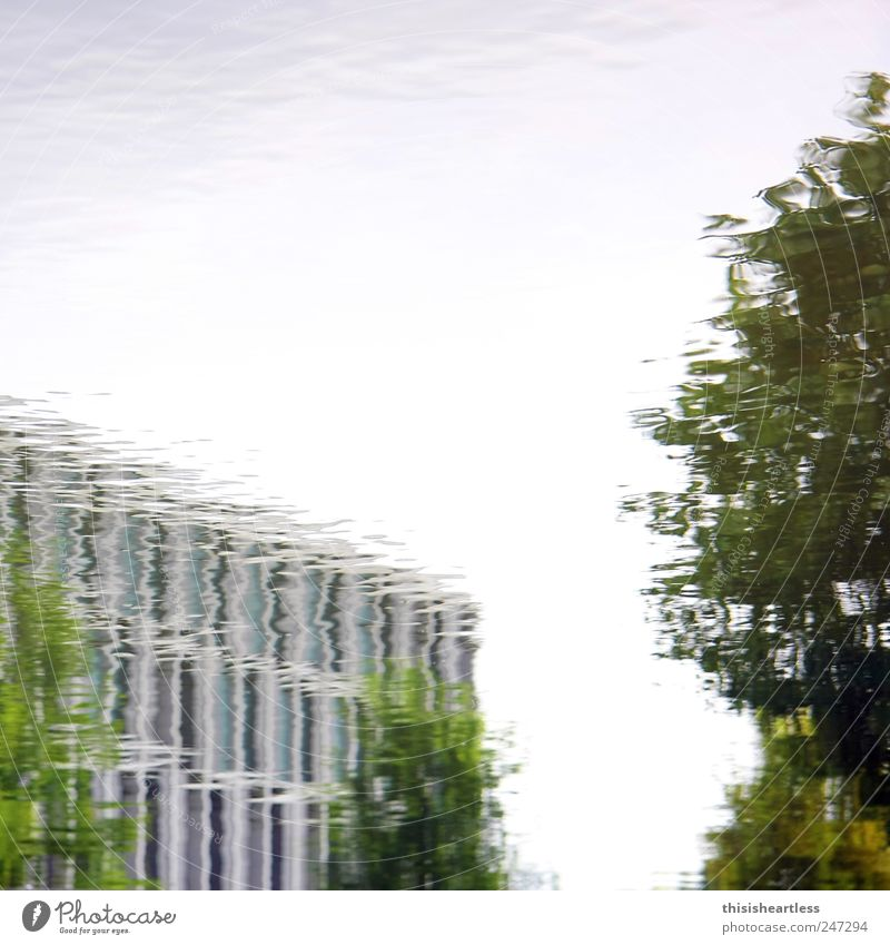 Sky Water Blue Green Tree Plant House (Residential Structure) Window Wall (building) Environment Landscape Architecture Wall (barrier) Building Dream Park
