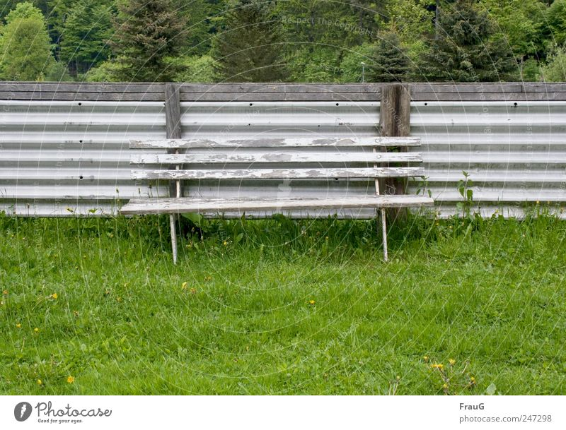 CAMOUFLAGE Summer Bench Tree Grass Bushes Fence Relaxation Sit Gray Derelict Colour photo Exterior shot