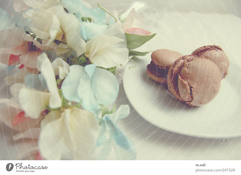 Beautiful Flower Sweet Uniqueness Candy Chocolate