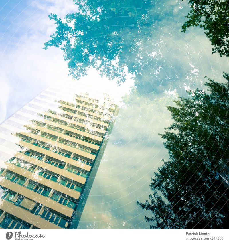 parallel worlds Environment Nature Landscape Elements Sky Clouds Weather Tree Forest Town House (Residential Structure) High-rise Manmade structures Building