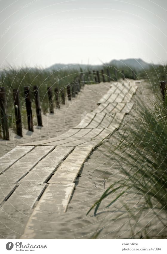 footbridge Well-being Relaxation Vacation & Travel Tourism Summer Summer vacation Beach Ocean Nature Sand Beautiful weather Meadow Coast North Sea Horizon Idyll