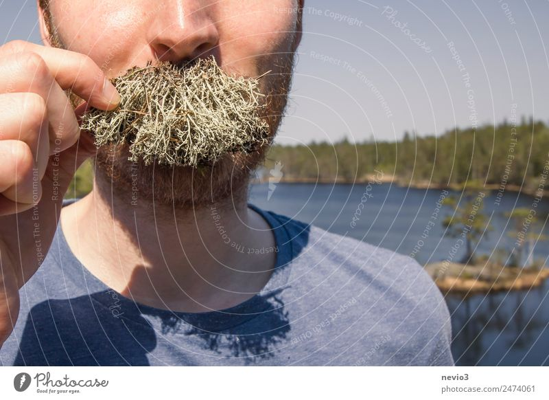 To the beard lichens Lifestyle Style Hair and hairstyles Face Human being Masculine Head 1 18 - 30 years Youth (Young adults) Adults Facial hair Moustache