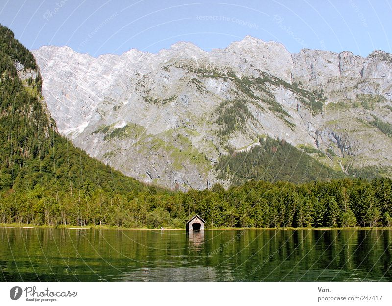 Nature Water Tree Green Summer Vacation & Travel Calm Loneliness Forest Relaxation Mountain Landscape Lake Trip Rock Alps