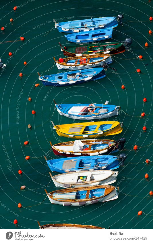 boat trip Vacation & Travel Tourism Ocean Work and employment Fisherman Fishery Agriculture Forestry Nature Water Mediterranean sea Vernazza Liguria Italy
