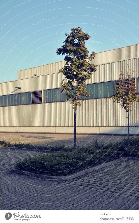Blue Loneliness Manmade structures Parking lot Stuttgart Industrial plant