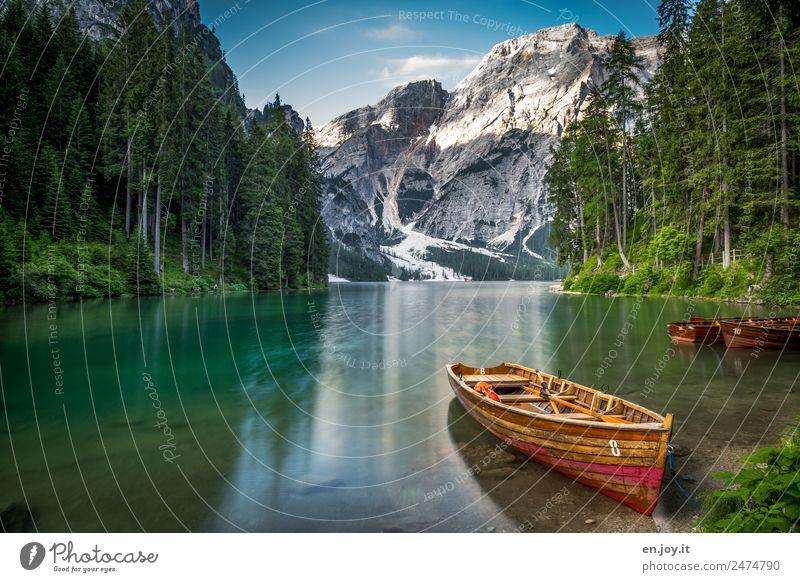 8 Leisure and hobbies Vacation & Travel Tourism Trip Adventure Summer Summer vacation Mountain Nature Landscape Sun Sunrise Sunset Forest Alps Dolomites Peak