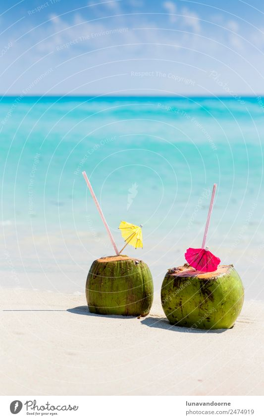 Coconut drinks on a Caribbean beach Fruit Beverage Alcoholic drinks Vacation & Travel Summer Beach Ocean Nature Landscape Sky Coast Fresh Blue Green Turquoise