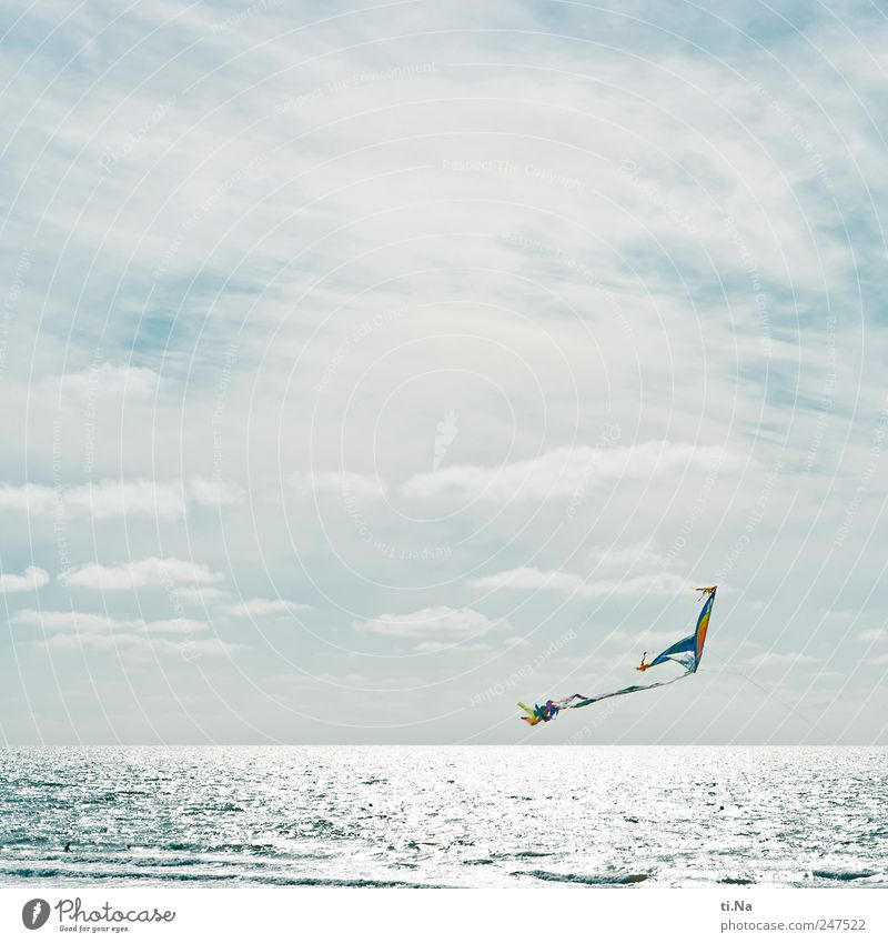 Come Fly With Me Leisure and hobbies Kite Hang gliding Vacation & Travel Tourism Far-off places Summer Summer vacation Landscape Clouds Beautiful weather