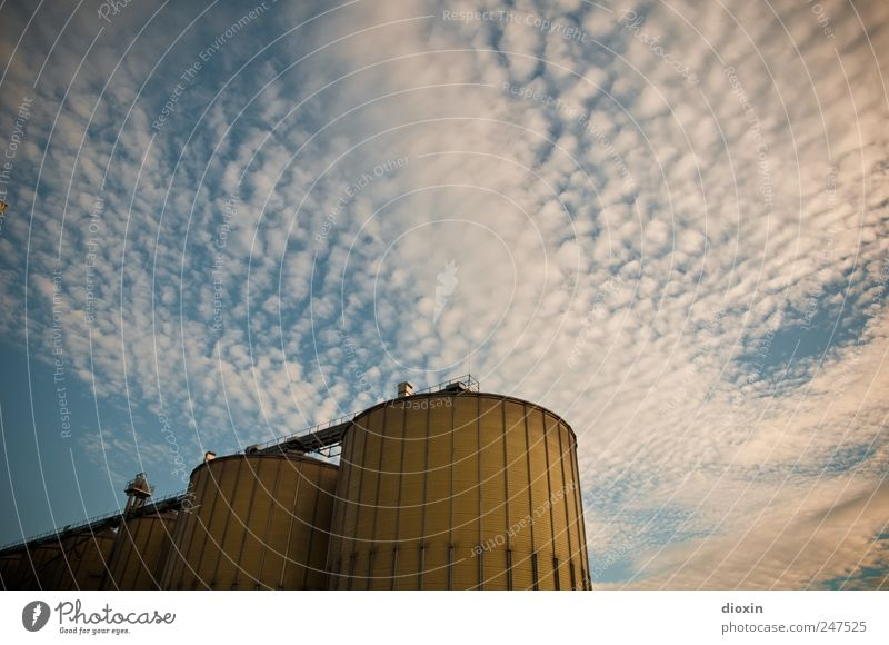 silos Sky Clouds Mannheim Germany Outskirts Deserted Industrial plant Harbour Manmade structures Silo Grain silo Barn Metal Gigantic Large Tall Blue Yellow
