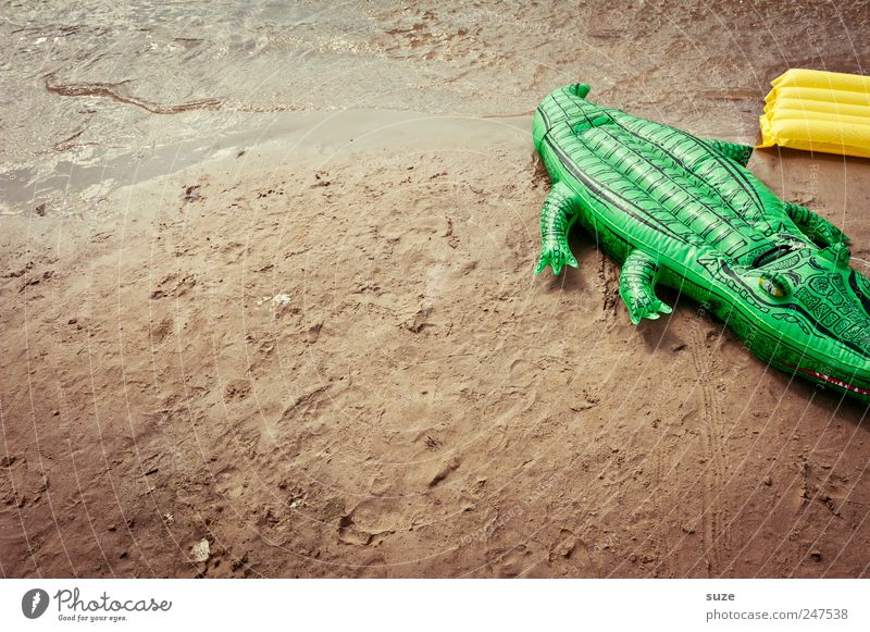 Green Summer Beach Funny Sand Leisure and hobbies Infancy Toys Summer vacation Childlike Crocodile Air mattress