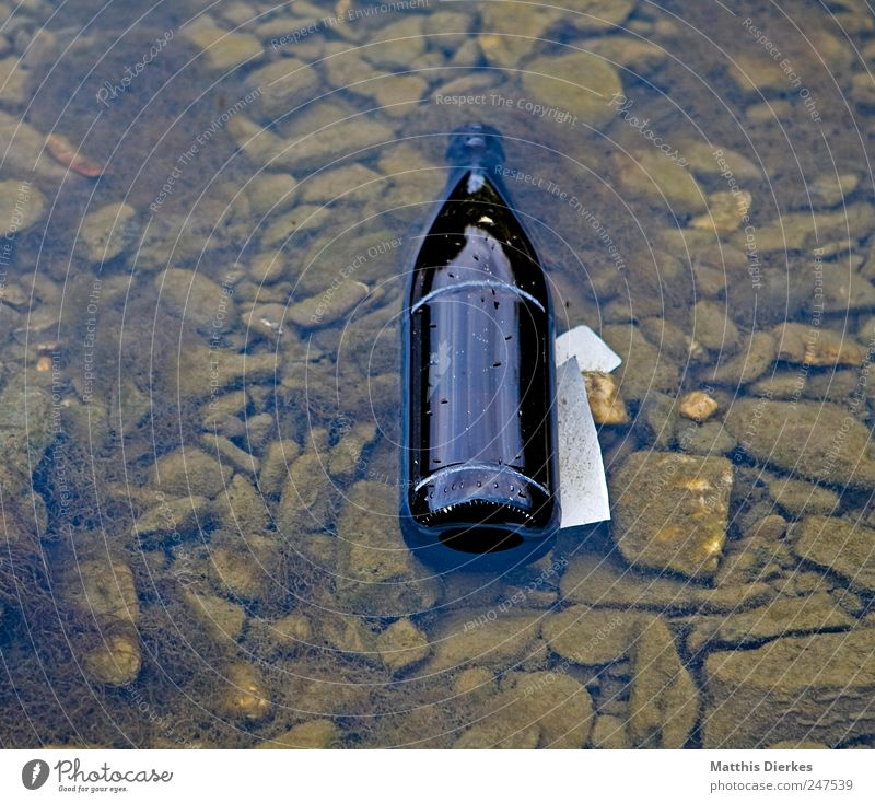 bottle Beverage Beer Bottle Environment Environmental pollution Bottle of beer Glass Shackled Colour photo Exterior shot Deserted Copy Space left