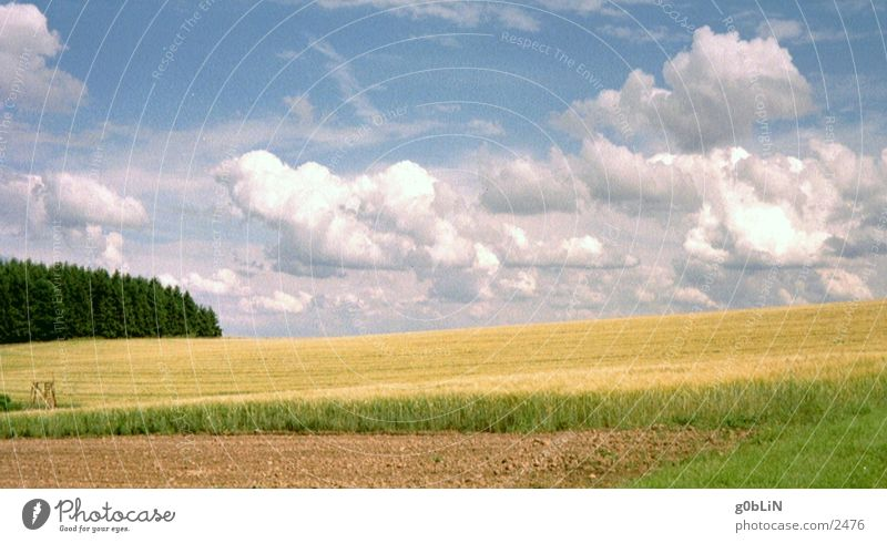 Nature Sky Clouds Freedom Landscape