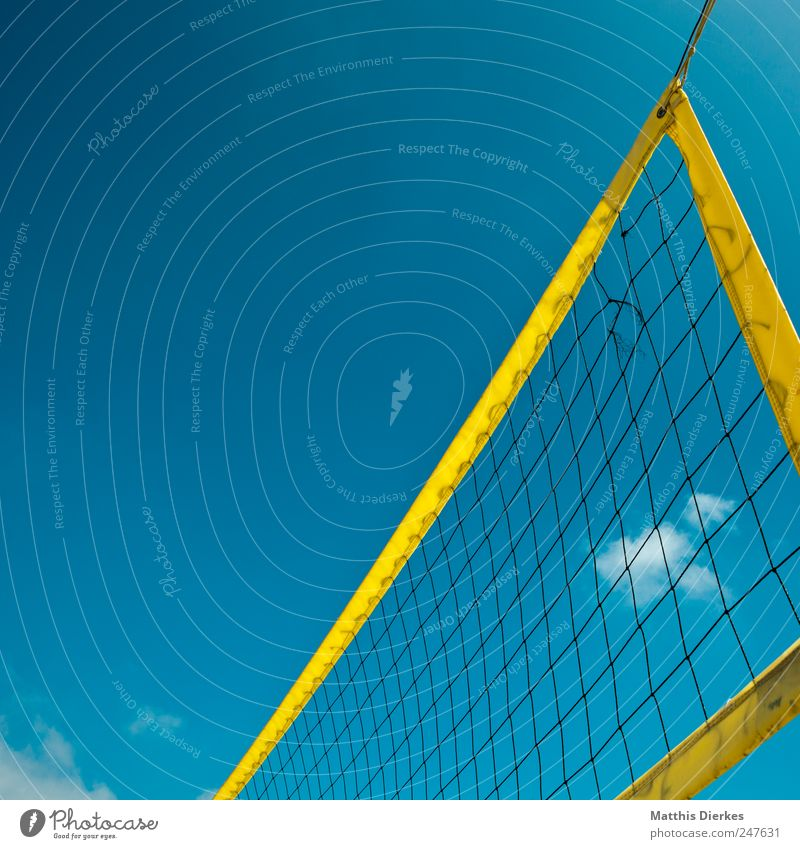 Beautiful Summer Sports Esthetic Net Sporting event Volleyball (sport) Ball sports Volleyball net
