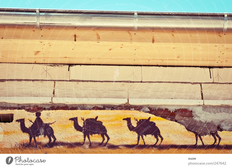 Dakar 2011 Style Design Hiking House (Residential Structure) Sky Building Wall (barrier) Wall (building) Facade Eaves Animal Herd Graffiti Stripe Old Dirty