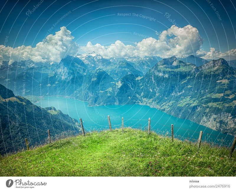 View from Stoos to Lake Lucerne Vacation & Travel Trip Adventure Far-off places Summer Mountain Hiking Environment Nature Landscape Plant Animal Sky Clouds