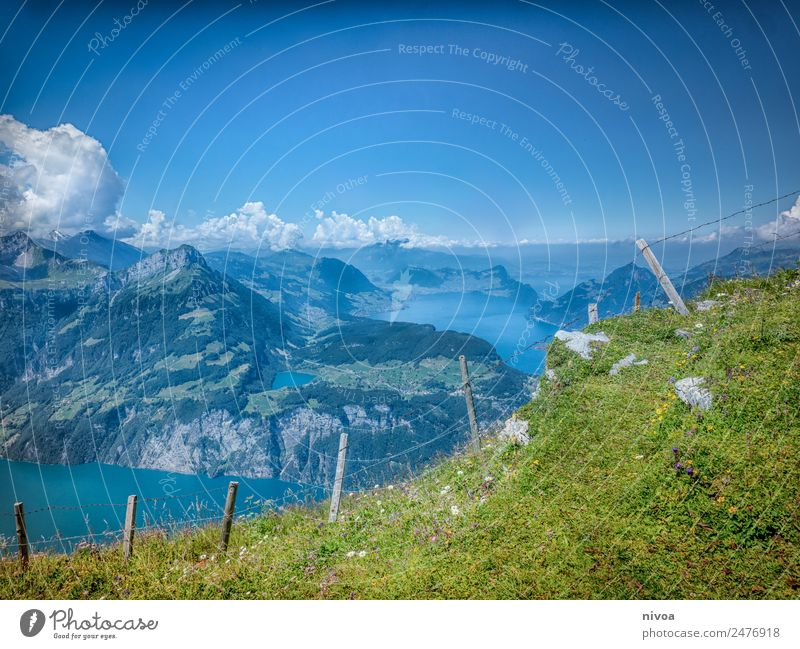 View from Stoos to Lake Lucerne Trip Adventure Far-off places Freedom Summer Mountain Hiking Environment Nature Landscape Plant Animal Elements Sky Clouds