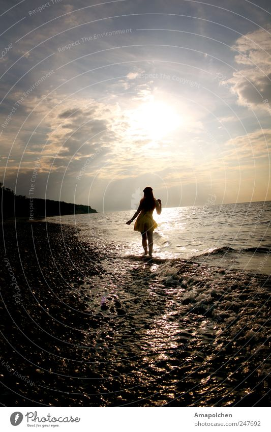 Woman Human being Nature Youth (Young adults) Water Beautiful Sun Joy Summer Beach Ocean Feminine Happy Style Adults