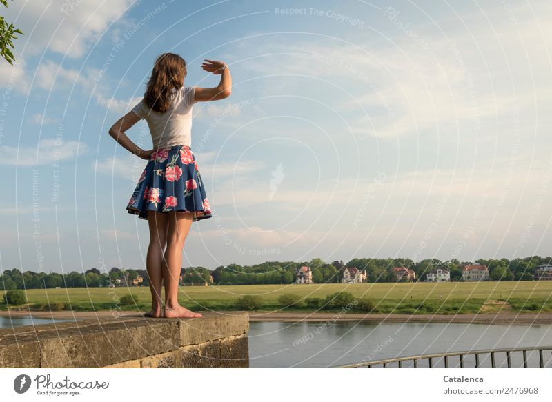 On the Elbe IV Feminine Young woman Youth (Young adults) 1 Human being Landscape Sky Clouds Summer Beautiful weather tree Grass Meadow River bank