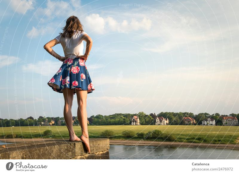 At the Elbe III Feminine Young woman Youth (Young adults) 1 Human being Landscape Sky Clouds Summer Beautiful weather tree Grass Meadow River bank