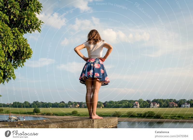 On the Elbe Feminine Young woman Youth (Young adults) 1 Human being Nature Landscape Sky Clouds Summer Beautiful weather tree Grass Park Meadow River bank