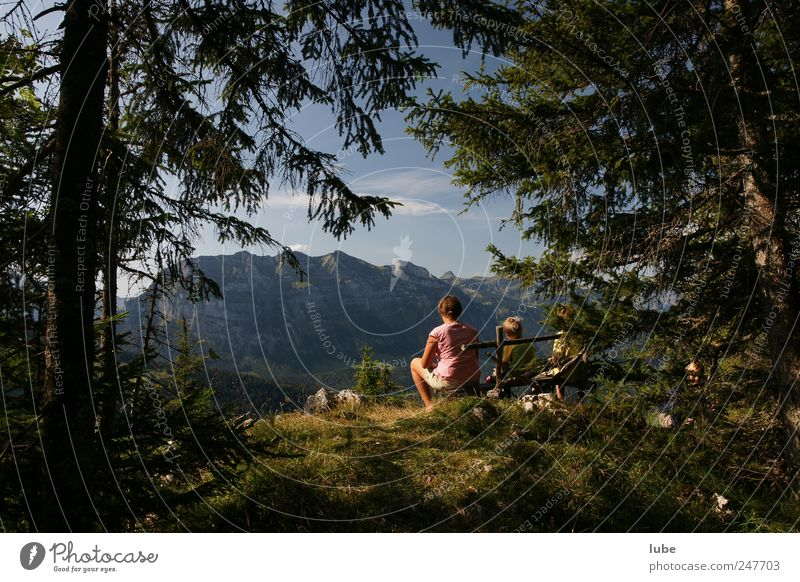 Happy outlook Vacation & Travel Tourism Trip Freedom Summer Summer vacation Mountain Hiking Nature Landscape Climate Beautiful weather Forest Rock Alps Peak