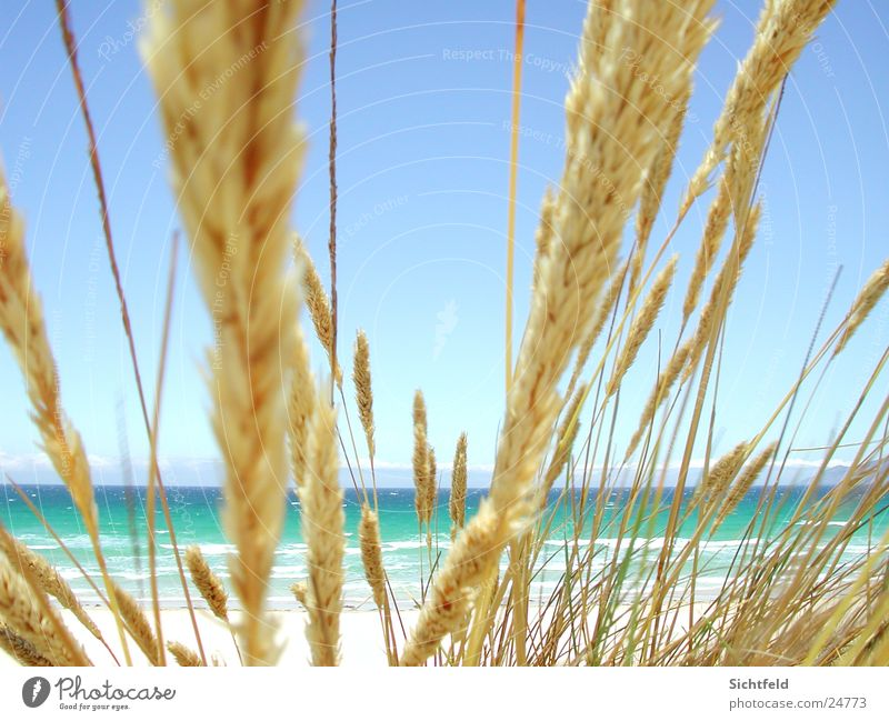 Nature Water Sky Ocean Blue Summer Beach Vacation & Travel Far-off places Sand Wind Weather Hot Spain Beautiful weather Atlantic Ocean