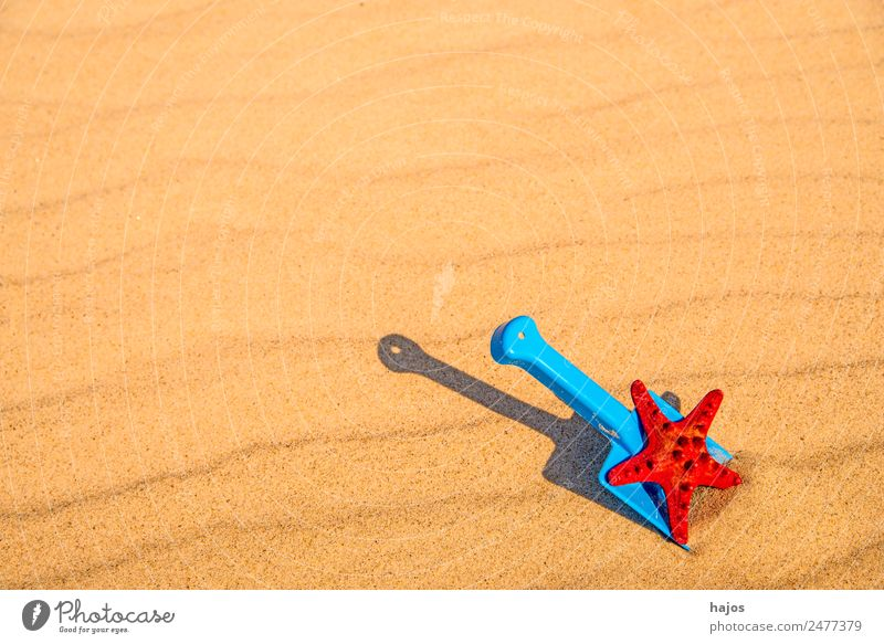 Shovel and starfish on the beach Joy Relaxation Vacation & Travel Summer Beach Child Sand Yellow Tourism Toys Blue Starfish Red recover Children's game Playing