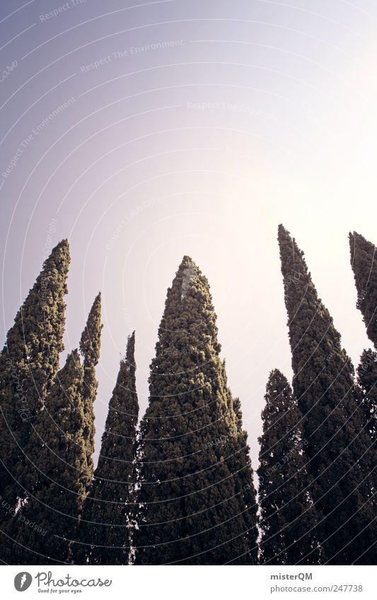 Sky Nature Green Tree Vacation & Travel Tall Growth Italy Symmetry South Mediterranean Italian Vacation mood Cypress Vacation photo Vacation destination