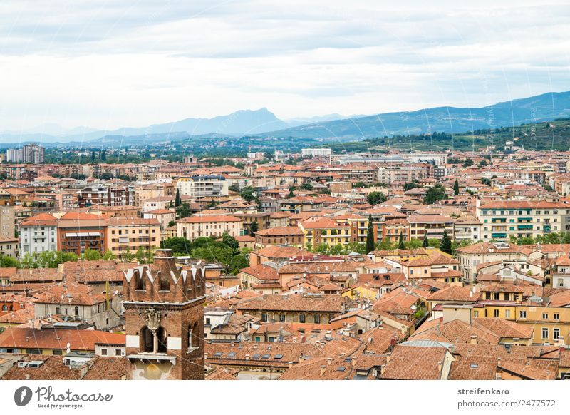 View of the roofs of Verona from Torre dei Lamberti Vacation & Travel Tourism Forest Alps Mountain Lake Lake Garda Italy Europe Town Old town
