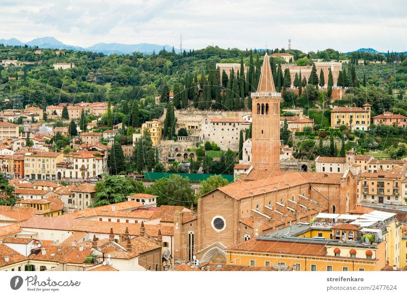 View of the roofs of the old town of Verona from the Torre dei Lamberti, Italy Vacation & Travel Tourism Forest Alps Mountain Lake Lake Garda Europe Town