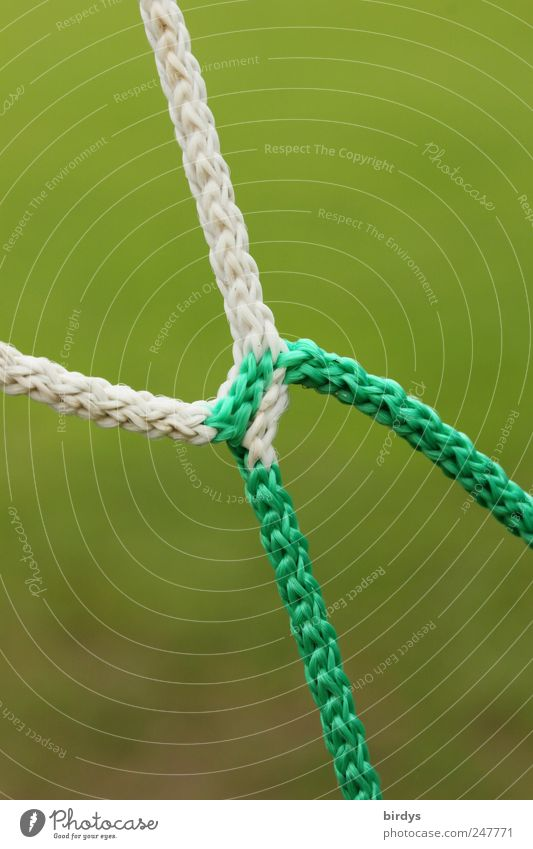 White Green Rope Net Connectedness Football pitch Ball sports Soccer Goal Detail Synthesis Dual Diverge Splice Nylon cord