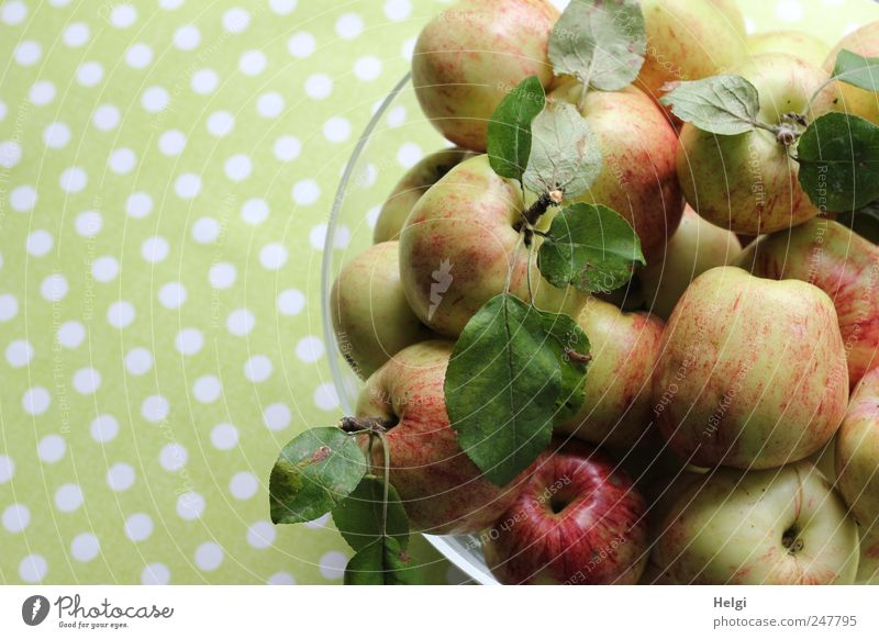 freshly harvested apples with leaves in a glass bowl against a green background with white dots Food Fruit Apple Nutrition Organic produce Vegetarian diet Bowl