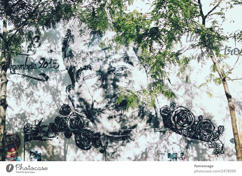 Town Tree Travel photography Face Graffiti Art Head City life Masculine Asia Downtown Painting and drawing (object) Street art Bizarre Work of art Quarter