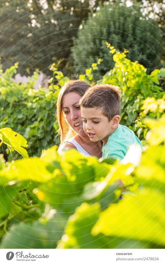 Beautiful mother spends time with her son in the field of grapes Woman Child Human being Nature Vacation & Travel Summer Plant Green White Leaf Joy Adults