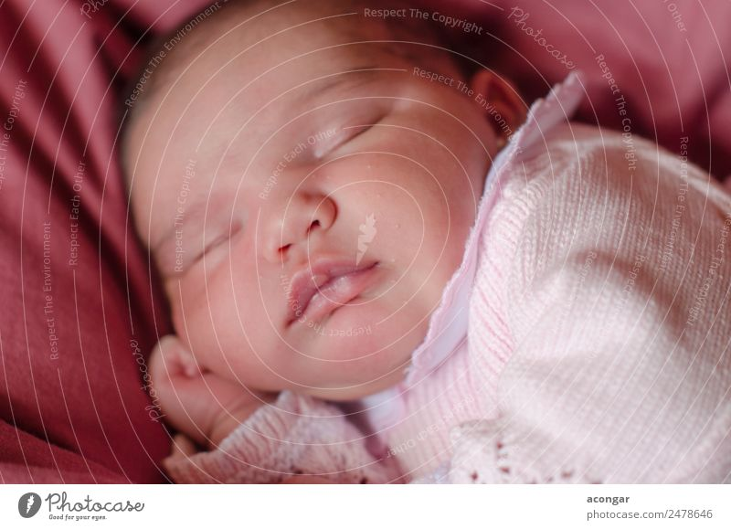 Nice Newborn asleep peacefully Lifestyle Beautiful Face Human being Feminine Child Baby Girl Infancy 1 0 - 12 months Sleep Emotions Safety Protection