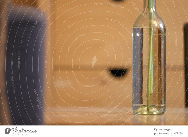 bottle Vase Flower vase Beige Bottle of wine Living or residing Glass