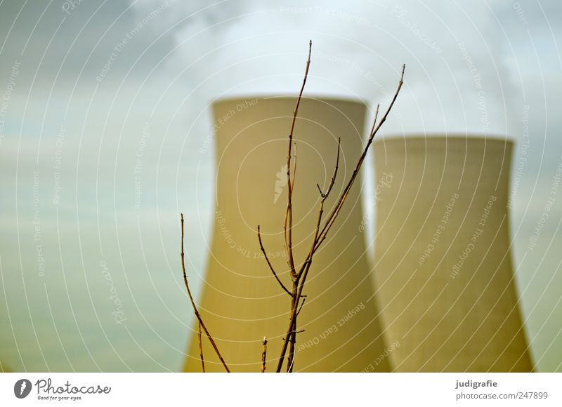 NUCLEAR POWER PLANT Energy industry Nuclear Power Plant Environment Sky Bushes Industrial plant Factory Chimney Bleak Exhaust gas Tower Colour photo