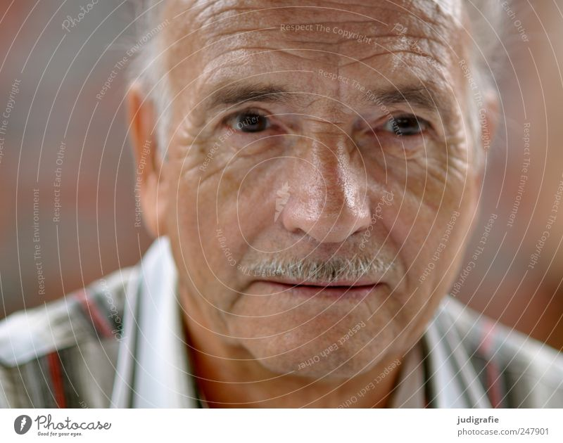 seventy-seven Human being Masculine Man Adults Male senior Senior citizen Face 1 60 years and older Facial hair Moustache Wait Sympathy Colour photo