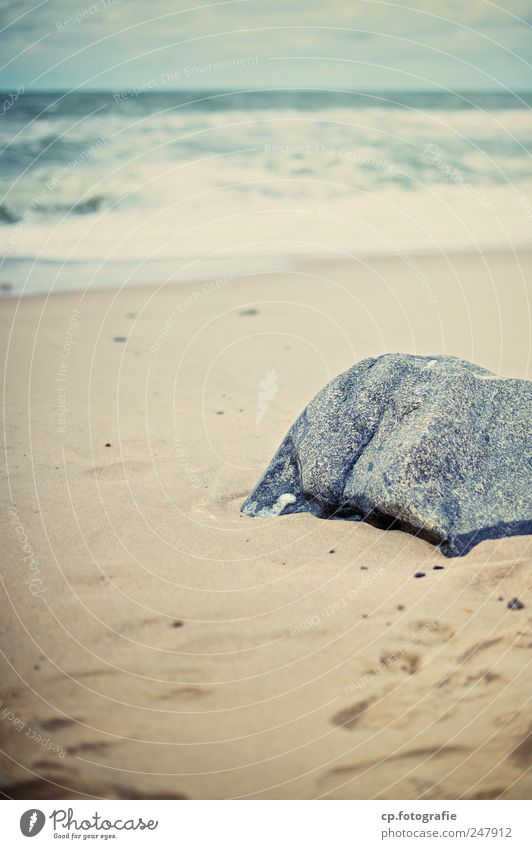 A little stone in the surf Landscape Coast Beach North Sea Denmark Natural Footprint Day Shallow depth of field