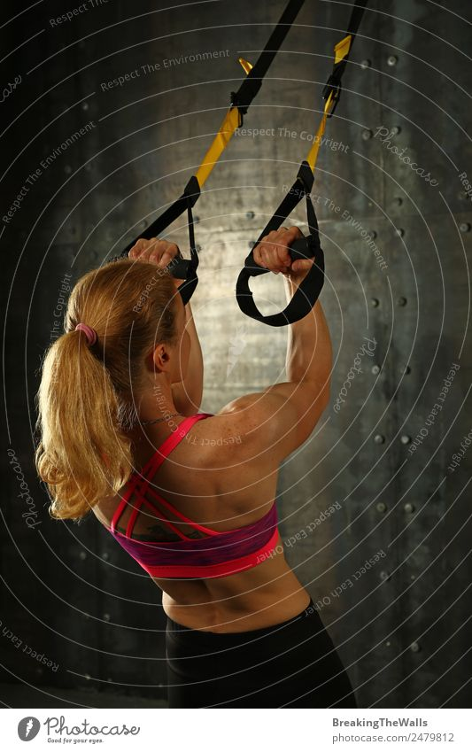 Woman training arms with trx fitness straps Lifestyle Sports Fitness Sports Training Track and Field Sportsperson Young woman Youth (Young adults) Adults Arm 1
