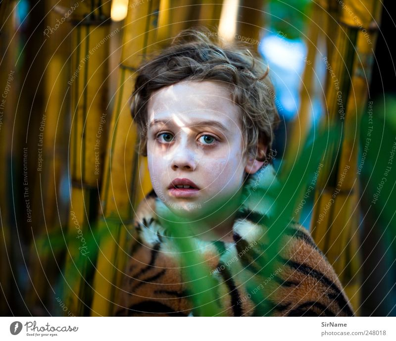 171 [in the world] Beautiful Playing Vacation & Travel Adventure Garden Child Boy (child) Infancy Life Human being 3 - 8 years Youth culture Nature Plant Tree