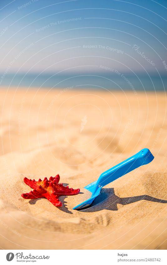 Shovel and starfish on the beach Joy Relaxation Vacation & Travel Summer Beach Child Sand Yellow Tourism Blue Starfish Red Ocean Sky Summer vacation
