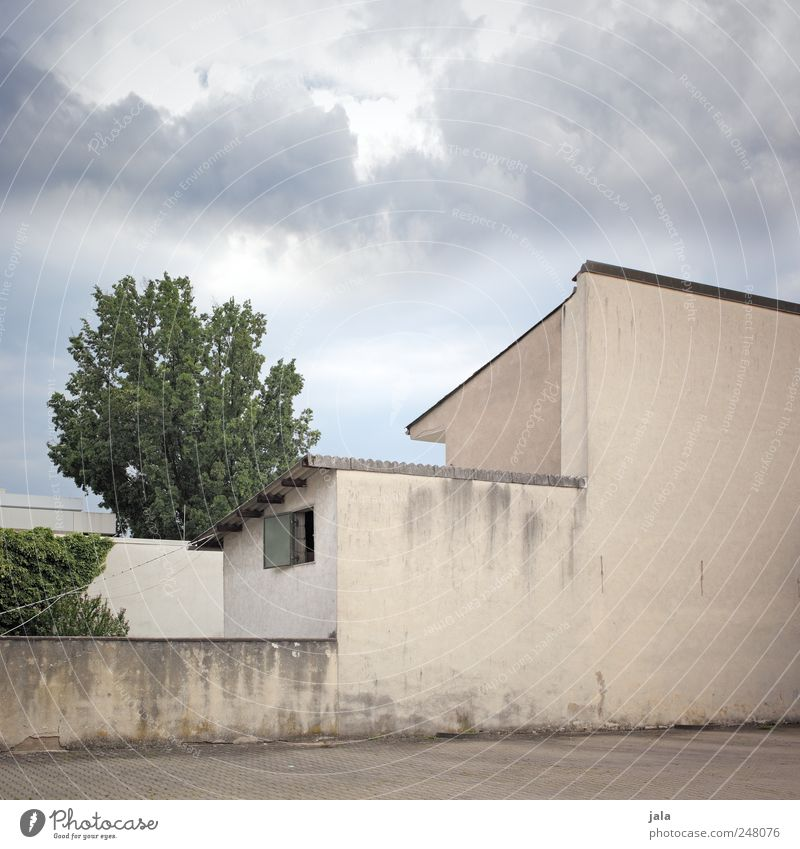 façade Sky Clouds Plant Tree Foliage plant House (Residential Structure) Places Wall (barrier) Wall (building) Facade Window Gloomy Colour photo Exterior shot