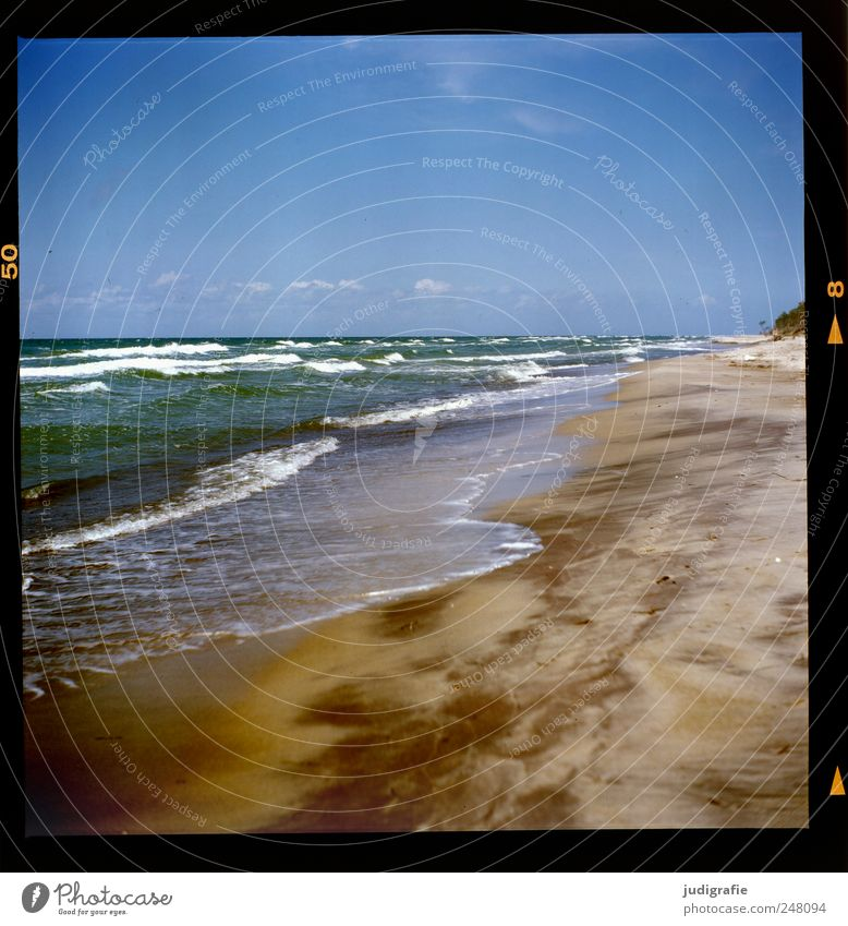 western beach Environment Nature Landscape Sand Water Sky Climate Cold Wild Waves White crest Baltic Sea Darss Western Beach Colour photo Exterior shot Deserted