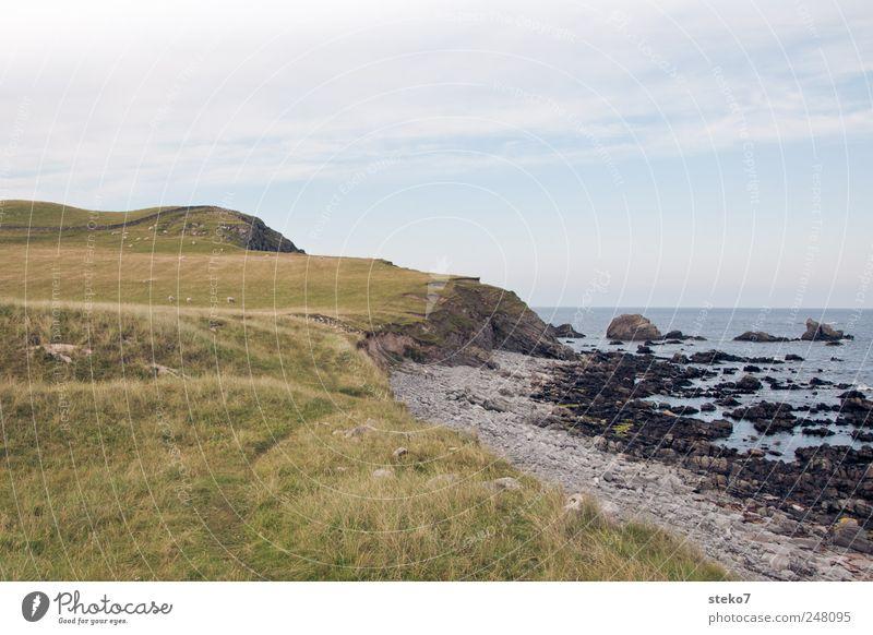 Green Blue Summer Beach Ocean Meadow Coast Rock Hill Bay Beautiful weather Scotland