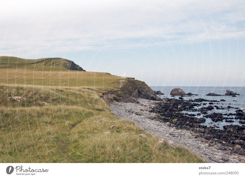 Scottish bathing landscape Summer Beautiful weather Meadow Hill Coast Beach Bay Ocean Blue Green Scotland Rock Colour photo Exterior shot Deserted