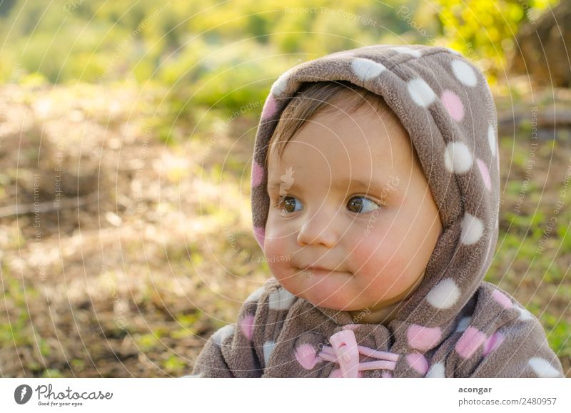Portrait of a beautiful baby Human being Beautiful Girl Face Natural Feminine Infancy Baby Coat Horizontal 0 - 12 months