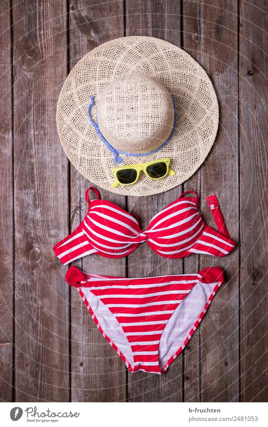 summer vacation Wellness Life Swimming & Bathing Summer Summer vacation Sunbathing Bikini Sunglasses Hat Relaxation Freedom Leisure and hobbies Joy